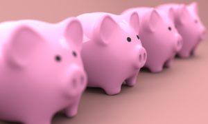 11 piggy-2889044_1920